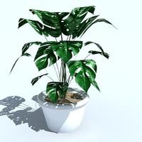 plant pot 3d model