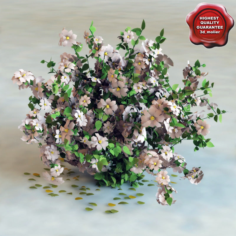 Hi-poly_Bush&Flowers_0.jpg