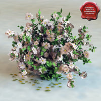 bush flowers 3d model
