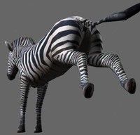 Incredible LOW POLY Zebra