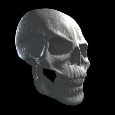 skull_front.bmp