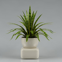 plant with flowerpot_03