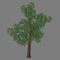 tree - 1 3d max
