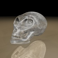 3D glass alien skull and brain