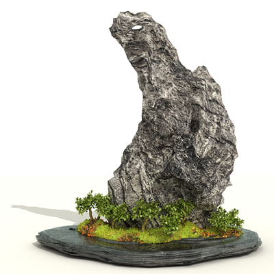 rock_bonsai.jpg