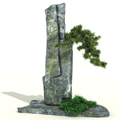 rock_bonsai_2.jpg