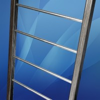 3d fixed ladder model