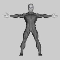 maya muscular male