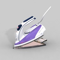 steam iron max