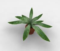 Plant5.zip