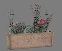 Flower flowers plant flower beds parterre006.rar