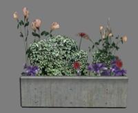 3ds-3dsmax-low-polygon-plant plant flower 3d max