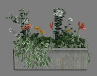 3ds max 3ds-3dsmax-low-polygon-plant flower plant lower