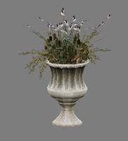 3d 3ds-3dsmax-low-polygon-plant flower model