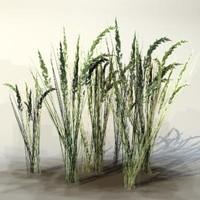 Grass_01.zip