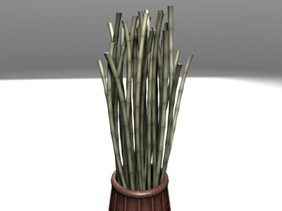 max vase bamboo sticks