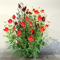 pc flower 3d model