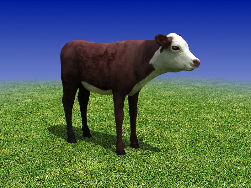 sample_02_calf_cow_3d_model.jpg
