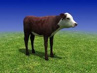 Calf Cow 3D Model
