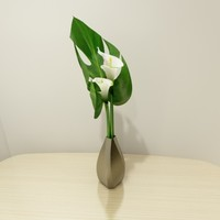 monstera calla lily vase