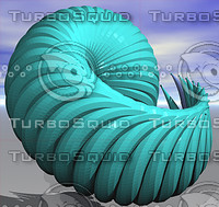 3d seashell groboto model