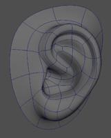 Basic Ear