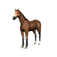 Horse Model OBJ