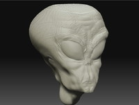 Alien Head Gray ZBrush .ZTL Model