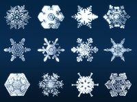3d 3ds snow flakes