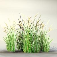Grass_12.zip