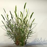 Grass_20.zip