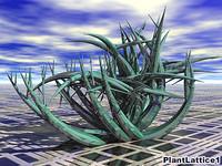 plant lattice 1 3d model