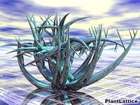 Plant-Lattice