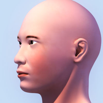asian_head02.jpg