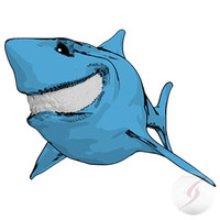 tiburon bruce max