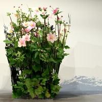 pc flower x