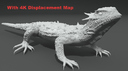 Horned Lizard 3D models