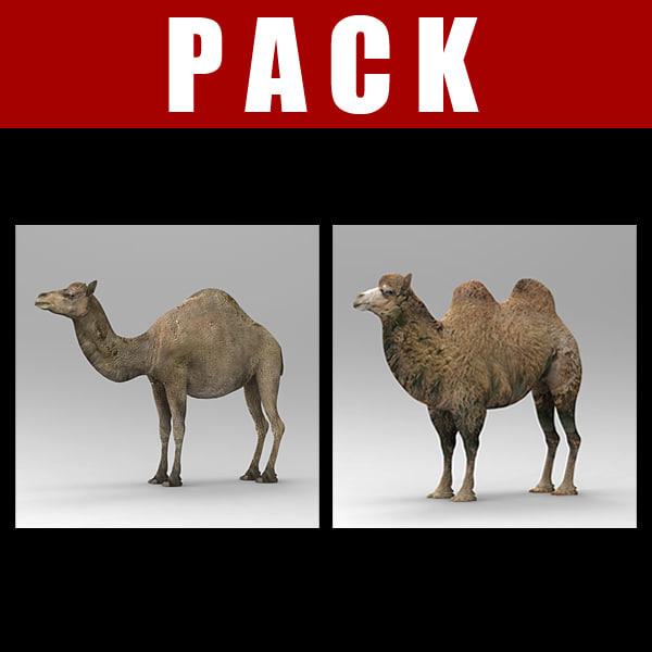 camel_pack.jpg