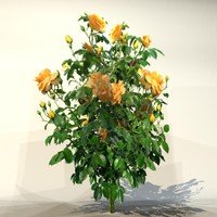 3ds max pc flower