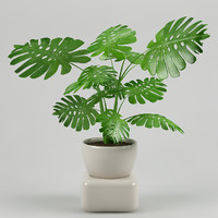 plant with flowerpot_10