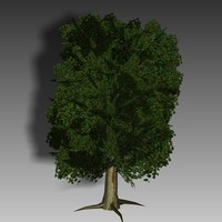 3d trees gaming root model
