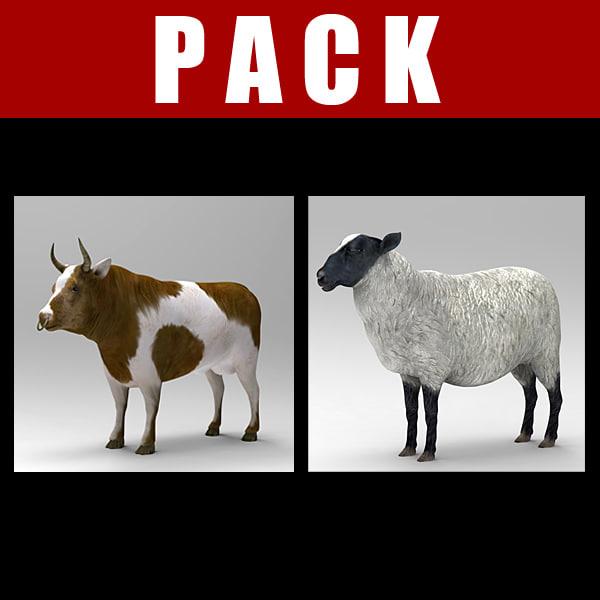 bull_pack.jpg