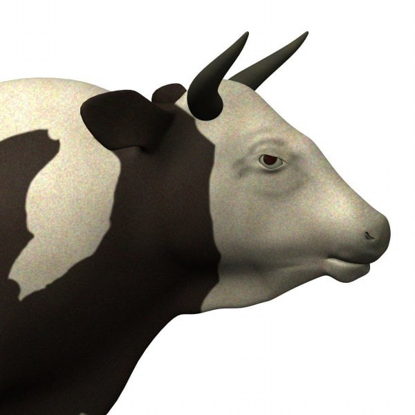 bull cow 3d model - bull+cow... by bescec