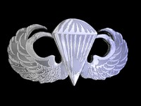 3ds max airborne wings
