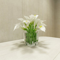 calla lily with glass vase