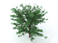 3D low polygon tree