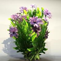 pc flower 3d max