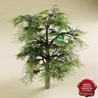 3ds max tree modelled