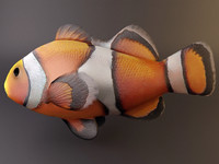 clown_fish.3ds