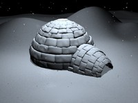 3d igloo snow